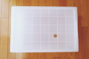 無印ポリプロピレンキャリーボックスと10円玉の比較